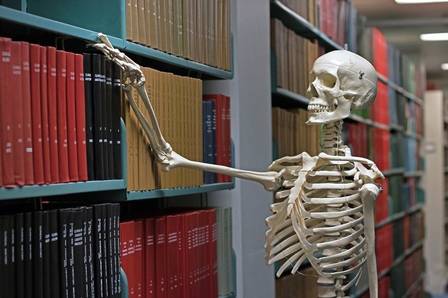 Public Libraries: Dead or Alive?